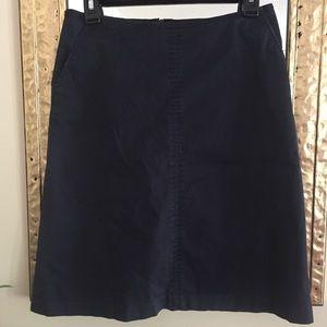 Banana Republic Navy A-line Skirt Size 2